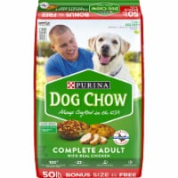 Dog Chow Complete Adult Dry Dog Food with Real Chicken