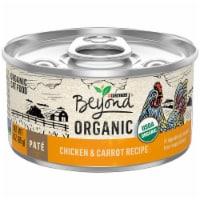 Beyond Organic Chicken & Carrot Recipe Pate Wet Cat Food - 3 oz