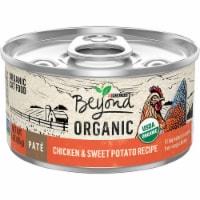Beyond Organic Chicken & Sweet Potato Recipe Pate Wet Cat Food - 3 oz