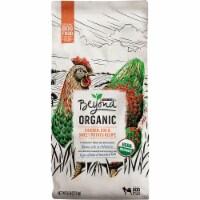 Beyond Organic Chicken Egg & Sweet Potato Adult Dry Dog Food