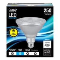 Feit Electric PAR38 E26 (Medium) LED Bulb Daylight 250 Watt Equivalence 1 pk - Case Of: 1; - Count of: 1