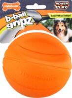 Nylabone Basketball Medium Dog Toy
