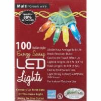 J Hofert Multi 100-Bulb Italian Style LED Light Set 2290