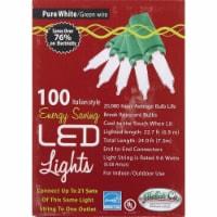 J Hofert Clear 100-Bulb Italian Style LED Light Set 2290-02 - 1
