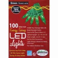 J Hofert Green 100-Bulb Italian Style LED Light Set 2290-05 - 1