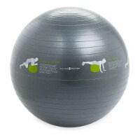 Gaiam Restore Stability Ball - 25.6 in