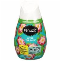Renuzit® After the Rain Gel Air Freshener - 7 oz