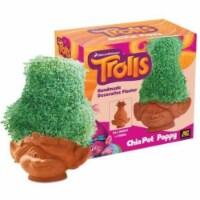 Chia Pet® DreamWorks Trolls Poppy Decorative Planter - Brown - 1 Count