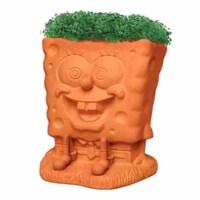 Chia Pet Planter - Spongebob - 1