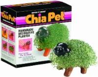 Chia Pet Puppy Handmade Decorative Planter - 1 ct