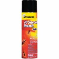 Enforcer 20-Second 16 Oz. Aerosol Spray Ant & Roach Killer TS16