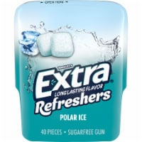 EXTRA Refreshers Polar Ice Sugar Free Chewing Gum 40 Count