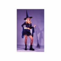 Costumes For All Occasions Fw1609 Bewitchin Babe