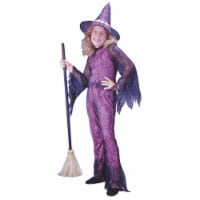 Costumes For All Occasions Fw8753Pksm Funky Witch Pink Child Sml