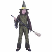 Costumes For All Occasions Fw8753Grsm Funky Witch Green Child Sml