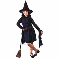 Costumes For All Occasions FW8752MD Medium Witch of The Web Child - 1