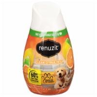 Renuzit Super Odor Neutralizer Clean Citrus Gel Air Freshener