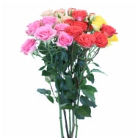 Rainbow Spray Rose Bouquet