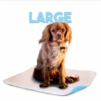 Lennypads 2327LP 23 x 27 in. Large Washable Pet Pad - White - 1