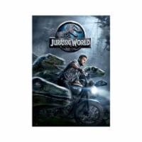 Jurassic World (2015 - DVD)