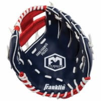 Franklin Field Master Series USA Regular Baseball Glove - Blue/Red