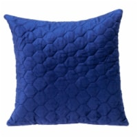 Parkland Collection Bazyli Transitional Blue Throw Pillow - 1