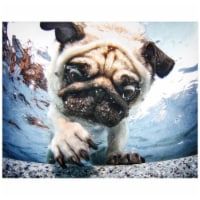 Empire Art Direct Pug Frameless Free Floating Tempered Glass Panel Graphic Wall Art - 1