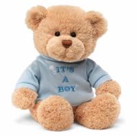Gund It's A Boy T-Shirt Teddy Bear 12 Inch Plush Figure - 1 Unit
