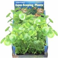 Penn-Plax Foregrounder Aqua-Scaping - Bunch Plants - Lush Landscape (Medium Pennywort) - 1 each