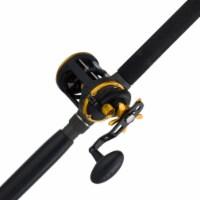 Penn SQL30LW2050C66 Squall Levelwind Saltwater Trolling Fishing Reel & Rod Combo