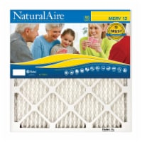 AAF Flanders 4595278 20 x 30 x 1 in. Naturalaire Polyester Synthetic Pleated Air Filter - Cas - 1