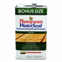 Thompsons WaterSeal Waterproofing Clear Wood Protector - 1.2 gal