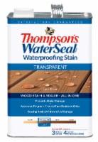 Thompson's® WaterSeal® Waterproofing Stain Transparent Acorn Brown Wood Stain & Sealer - 1 gal