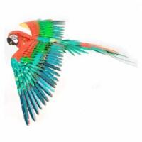 Metal Earth Iconx Parrot Jubilee Macaw Steel Model Kit - 1 Unit