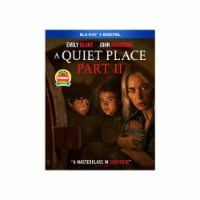 A Quiet Place Part 2 (Blu-Ray/Digital Copy) Available for Preorder to Ship 7/27 - 1 ct