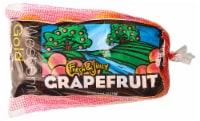 Ruby Grapefruit Bag