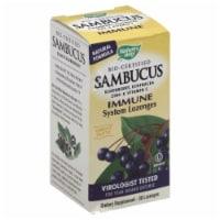 Nature's Way Sambucus Immune System Support