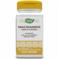 Nature's Way Niacinamide Non-Flushing Capsules