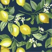 Roommates RMK11657WP Lemon Zest Peel & Stick Wallpaper, Navy - 1
