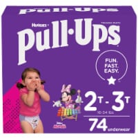 Pull-Ups Learning Designs Girls Training Pants 2T-3T 74 Count