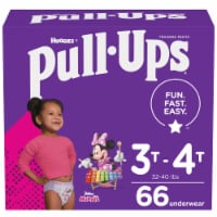Pull-Ups Learning Designs Girls Training Pants 3T-4T 66 Count
