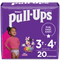 Pull-Ups Learning Designs Girls' Training Pants 3T-4T