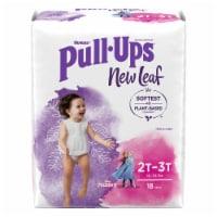 Pull-Ups New Leaf Girls Size 2 Training Pants