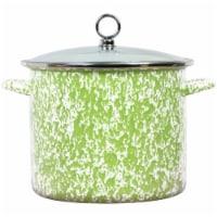 Reston Lloyd 8 qt. Stock Pot, Lime Marble