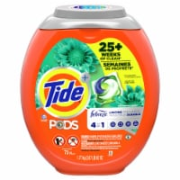 Tide Pods with Febreze Botanical Rain 4-in-1 Laundry Detergent Pacs