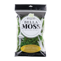 Syndicate Home and Garden Bella Moss Collection Preserved Forest Moss