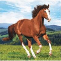 Creative Converting 339764 Wild Horse Beverage Napkins, 16 Count