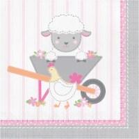 Creative Converting 339864 Farmhouse 1st Birthday Girl Napkins, 16 Count