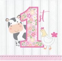 Creative Converting 339866 Farmhouse 1st Birthday Girl Beverage Napkins, 16 Count