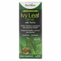 Herbion Naturals Sugar Free Ivy Leaf Syrup With Thyme Dietary Supplement  - 1 Each - 5 OZ